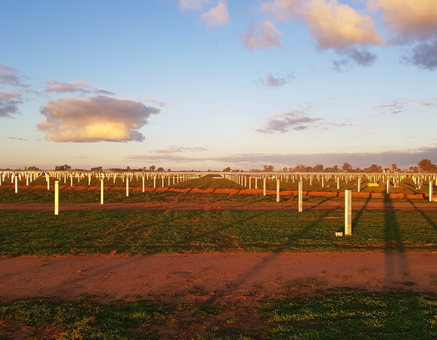 Solar Farm Foundations